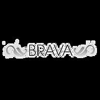 brava_edited.png