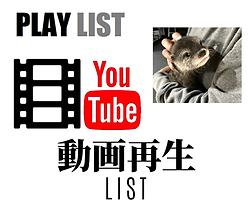 生き物別動画再生リスト   ノーザンみしま