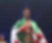 K-1 WORLD GPクルーザー級タイトルマッチ | 対戦相手戦歴 | 愛鷹亮