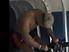 005 | 練習ショートムービー | 愛鷹亮 | プロキックボクサー | 日本