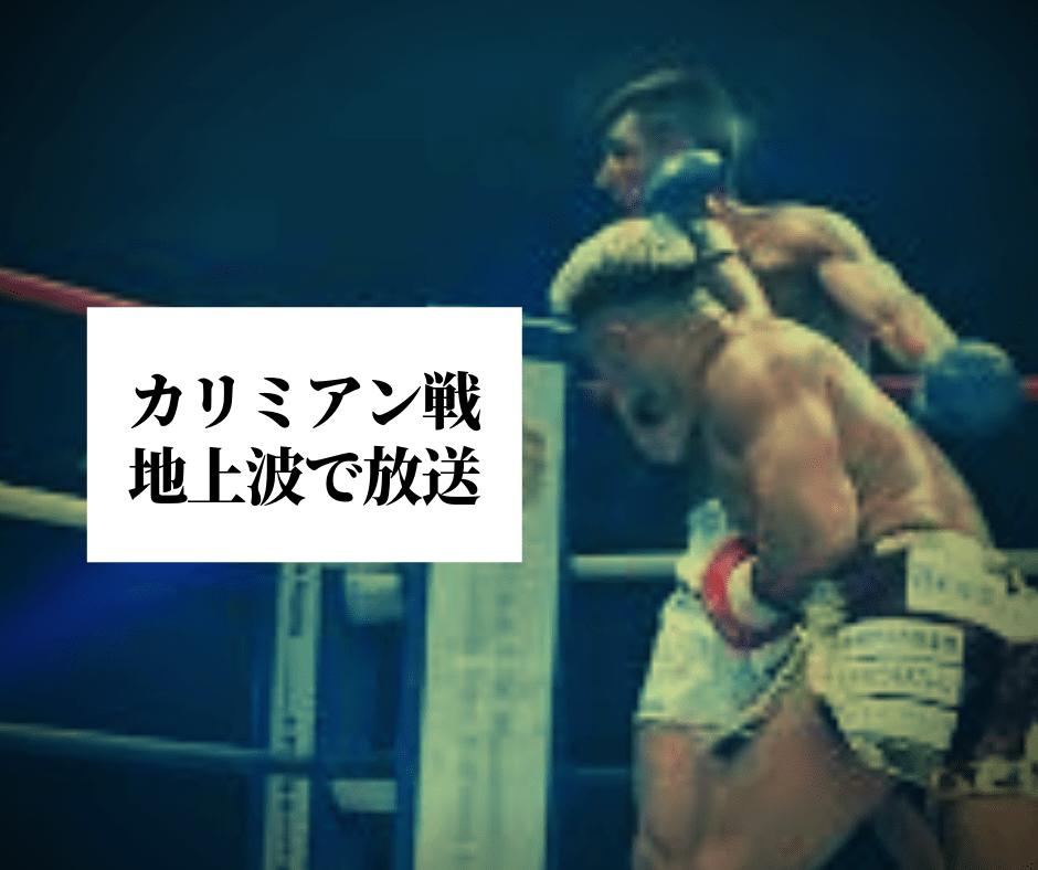 地上波放送 | 愛鷹亮 | プロキクボクサー | 日本