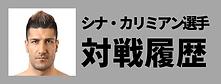 シナ・カリミアン選手過去の対戦履歴 | 愛鷹亮 | プロキックボクサー | 日本