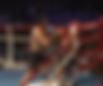 初代クルーザー級王座決定トーナメント準決勝 | 対戦相手戦歴 | 愛鷹亮