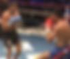 初代クルーザー級王座決定トーナメント決勝 | 対戦相手戦歴 | 愛鷹亮