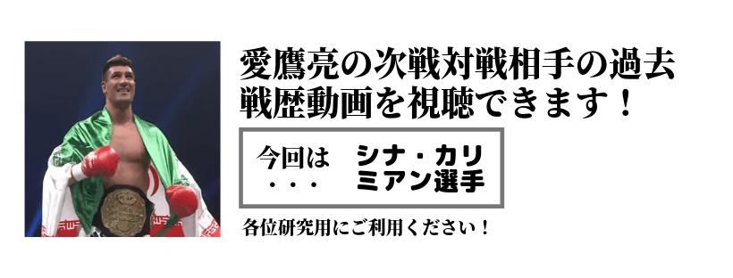 次戦対戦相手動画ページ新設 | 愛鷹亮 | プロキックボクサー | 日本