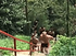 あと75日その1   練習ショートムービー   愛鷹亮   プロキックボクサー   日本