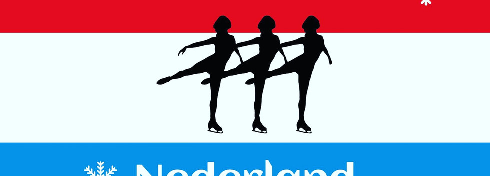 nieuw logo linis.jpg