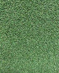 golf pro 12mm.jpg
