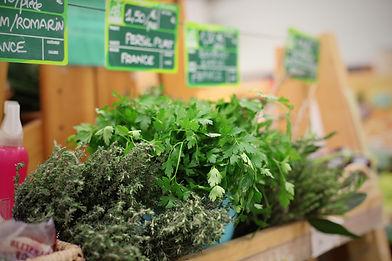 herbs-1049833.jpg