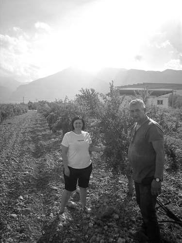 Iota & Konstantinos
