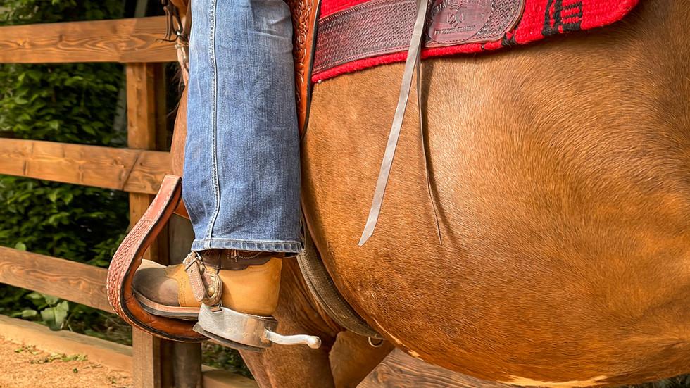 Horse Dream Sportiva-50.jpg