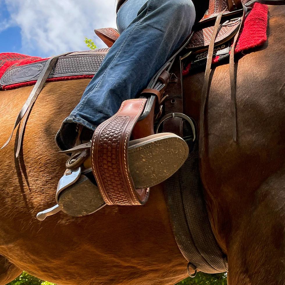 Horse Dream Sportiva-75.jpg