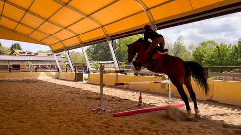 Horse Dream Sportiva-90.jpg