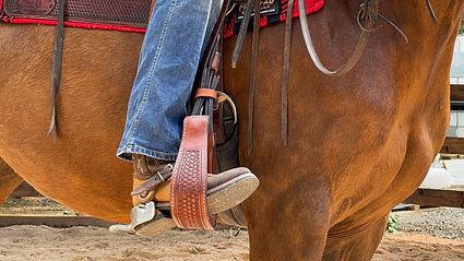 Horse Dream Sportiva-39.jpg