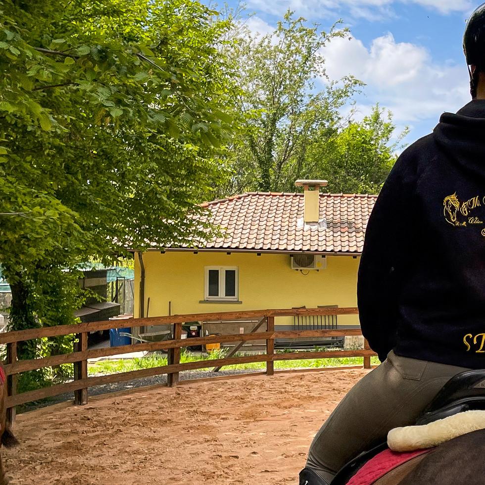 Horse Dream Sportiva-30.jpg