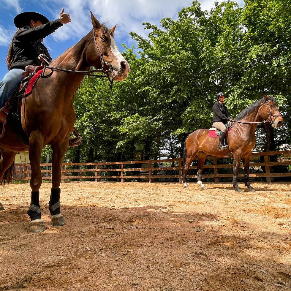 Horse Dream Sportiva-68.jpg