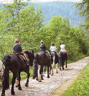 Visite a cavallo FM Horse-1.jpg