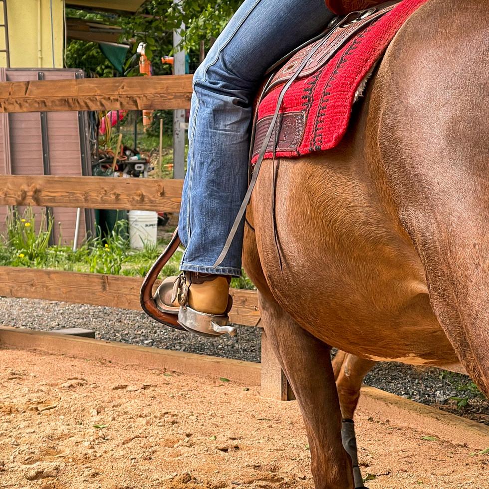 Horse Dream Sportiva-51.jpg