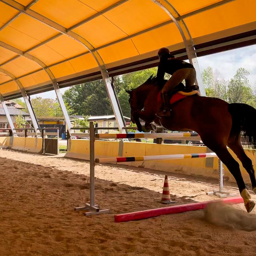 Horse Dream Sportiva-89.jpg