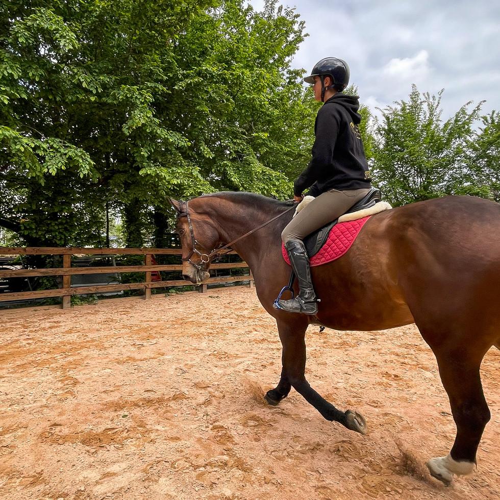 Horse Dream Sportiva-62.jpg