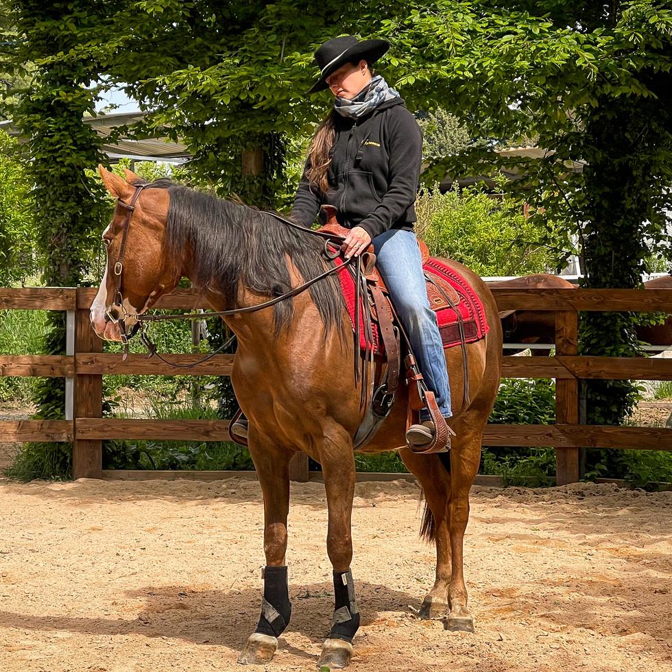 Horse Dream Sportiva-48.jpg
