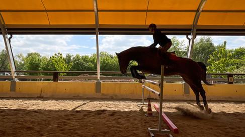 Horse Dream Sportiva-82.jpg