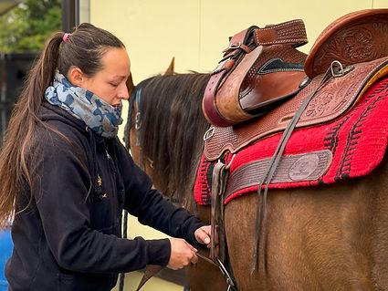 Horse Dream Sportiva-6.jpg