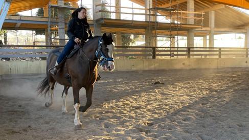 Campo Estivo 2021_equitazione estiva-16.