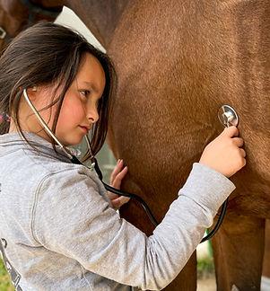 Horse Dream Sportiva-97.jpg