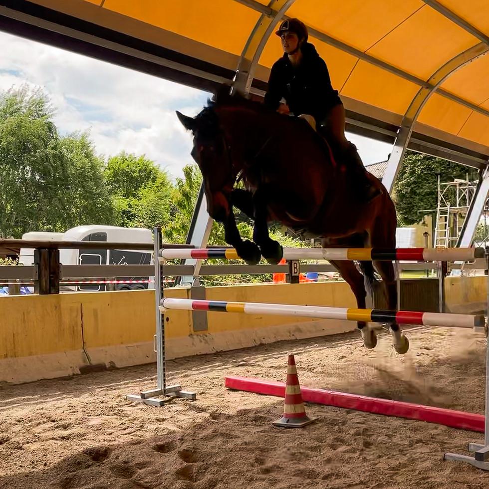Horse Dream Sportiva-86.jpg