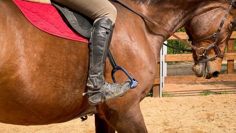 Horse Dream Sportiva-33.jpg