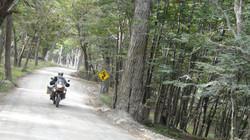 N-Parque Nacional do Ushuaia (24)
