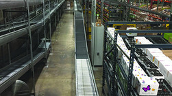 Capitol Husting upgrades to 24-volt DC conveyor