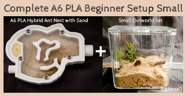 Complete A6 PLA Hybrid Ant Nest with Sand Bed Beginner Ant Setup Small