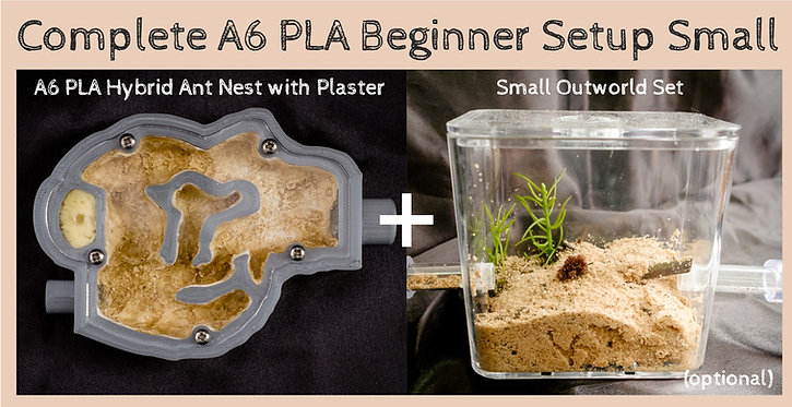 Complete A6 PLA Hybrid Ant Nest with Plaster Bed Beginner Setup Small