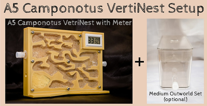 A5 Vertical Camponotus Ant Nest with HT Meter and wooden bedding Ant Farm