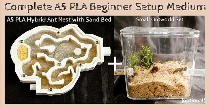 Ant Medium A5 PLA Sand Bed Formicarium Farm Housing Outworld Complete Set