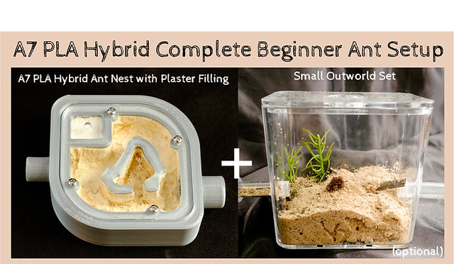 A7 PLA Hybrid Nest with Plaster Bed and Small Arena Set Complete Ant Setup