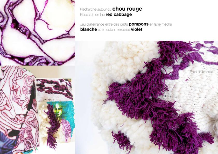 Recherche Chou Rouge