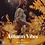 Thumbnail: Autumn Vibes - Preset Pack for Lightroom Mobile & Desktop