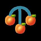Peach Pawn Symbol.png