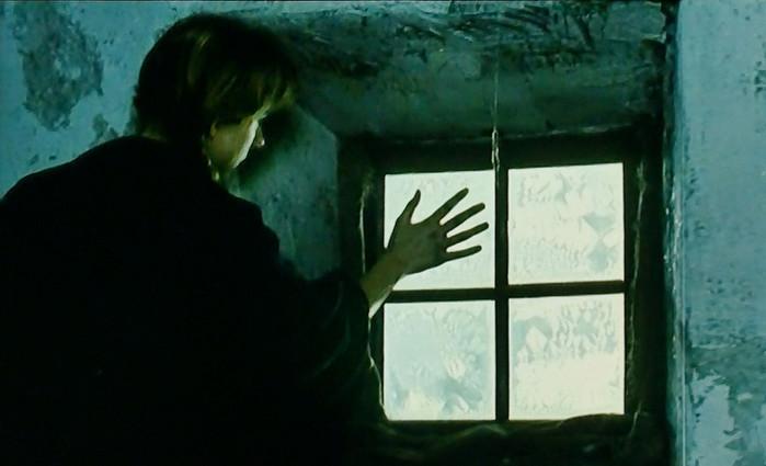 P1000055 Hand am Fenster 1.66.jpg