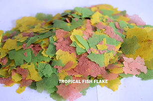 Tropical Fish Flakes.jpg