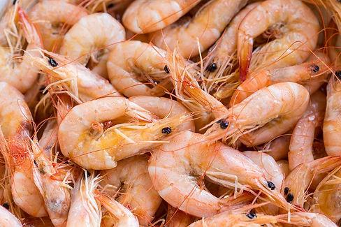 frozen-shrimps-and-prawns-suppliers-exporters-nigeria.jpg