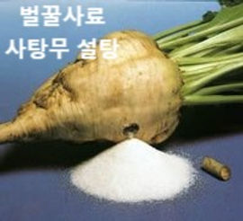 sugar-beets_edited.jpg