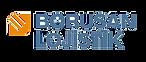 borusan logo.png
