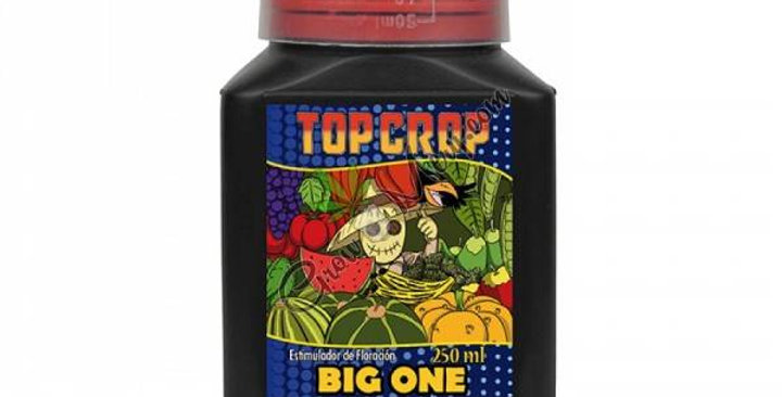 TOP CROP - BIG ONE - 1 L