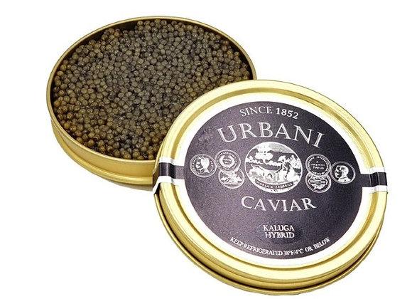 Kaluga Hybrid Caviar Starting  at 3.5oz-100gr