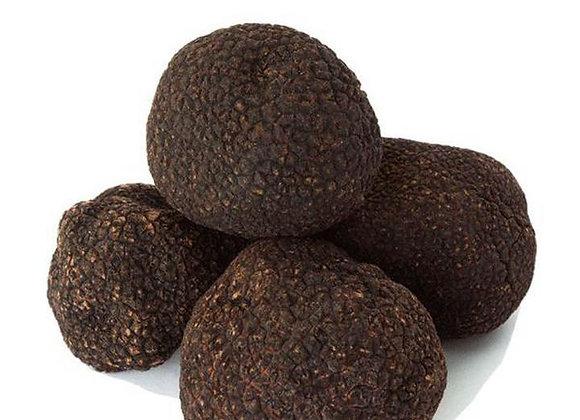 Fresh Black Winter Truffles ( Tuber melanosporum vitt )