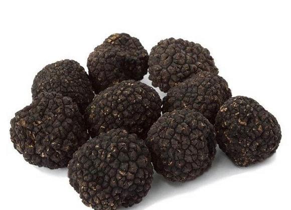 Fresh Black Burgundy Truffles ( Tuber Uncinatum )
